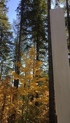 Steiermark - KLH - Massiv Bauen aus Holz