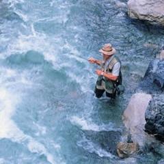 Niederösterreich - Fischen im schönsten Gewässer